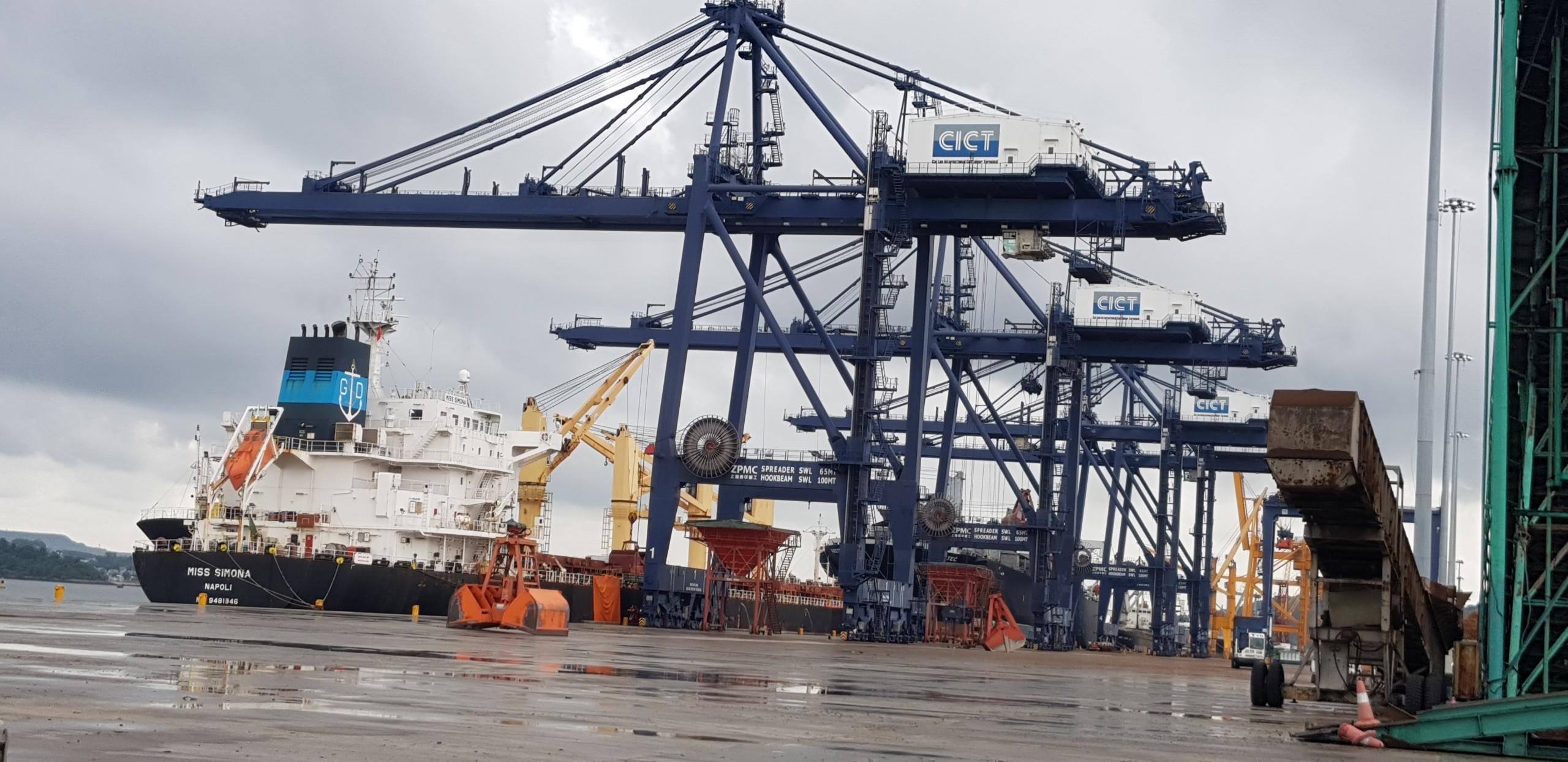 Tổng Hợp Tầu Nông Sản cảng Cái Lân Tháng 07.2020
