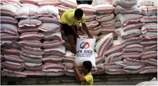 Việt Nam trúng thầu xuất khẩu hơn 100.000 tấn gạo sang Philippines
