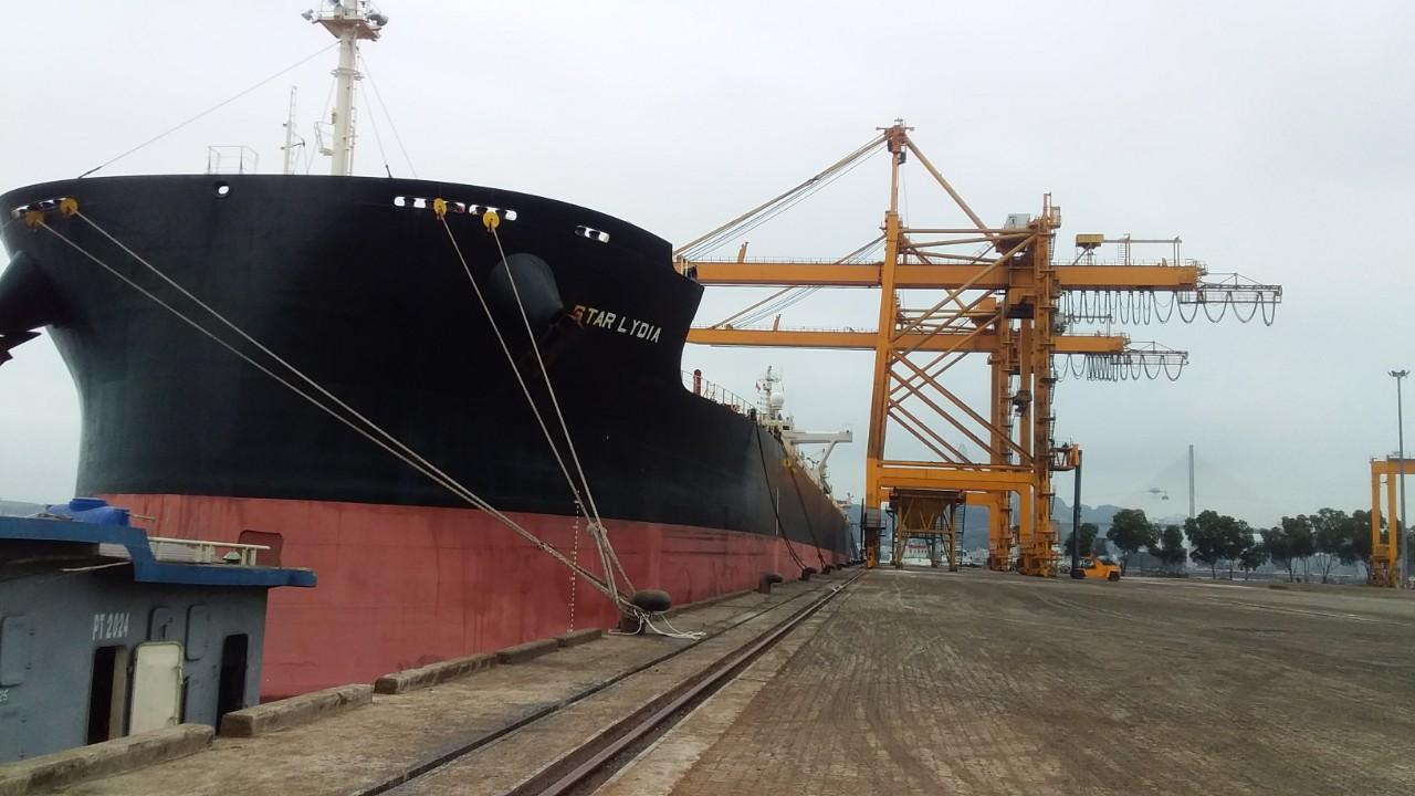 Tầu STAR LYDIA Ngô + Khô Đậu cảng Cái Lân