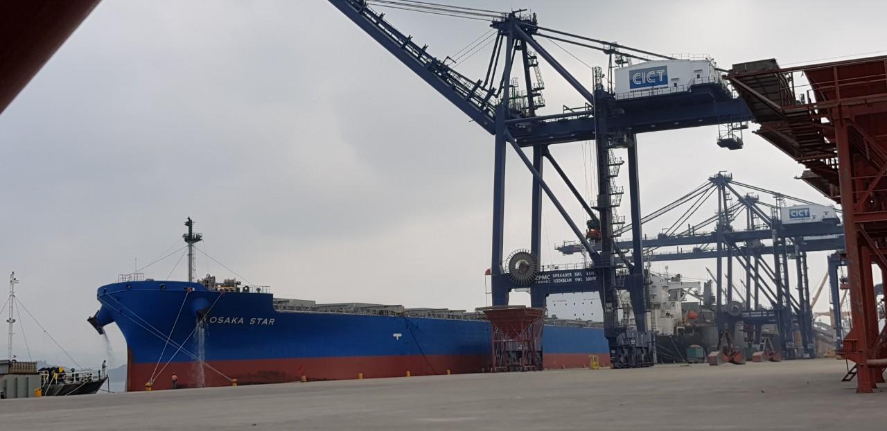 Tàu OSAKA khô đậu cảng CICT