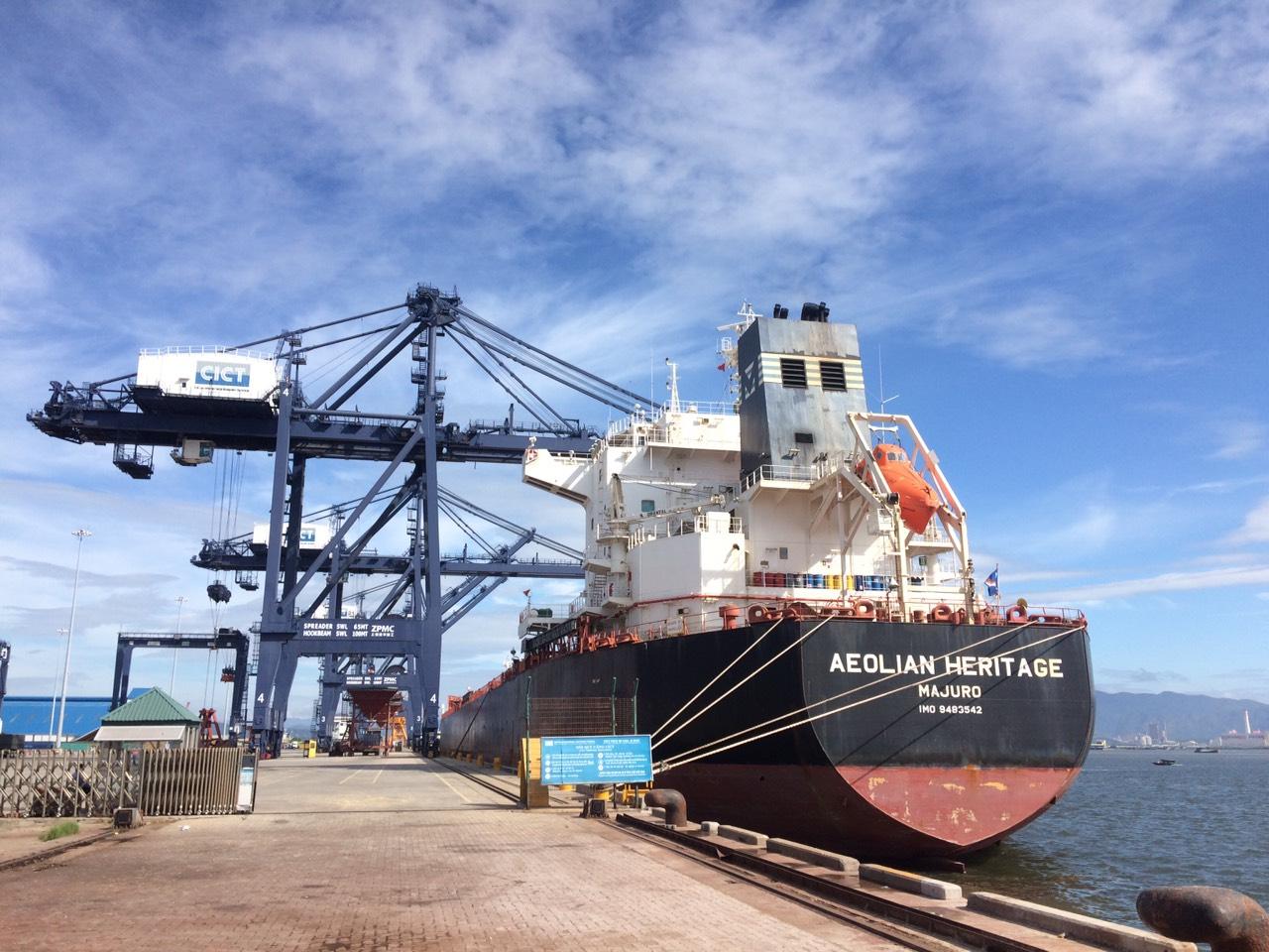 Tổng hợp tầu ngô, khô đậu cảng Cái Lân
