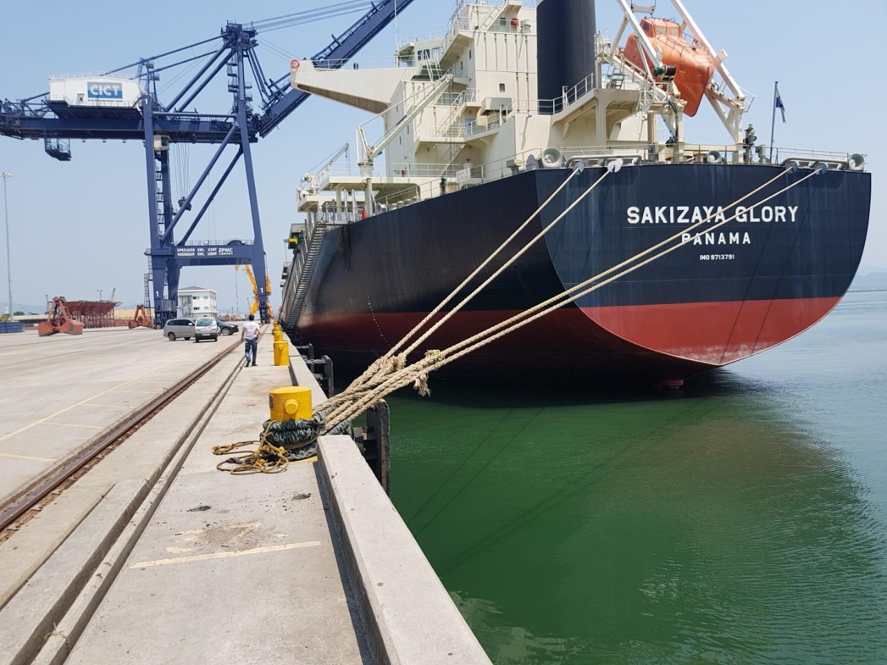 Tầu Sakizaya Glory khô đậu, lúa mỳ cảng CICT