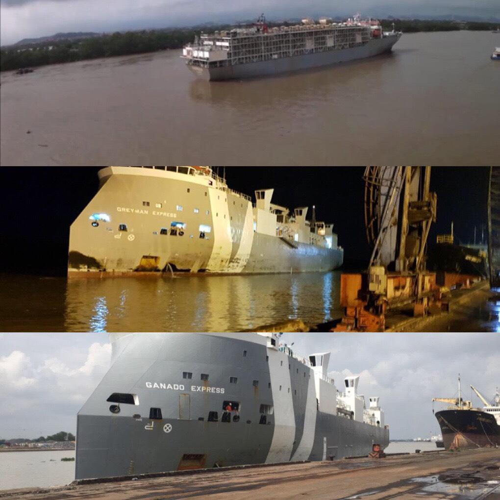 Chiến dịch vận chuyển Bò Úc Cảng Cá + Hoàng Diệu HP