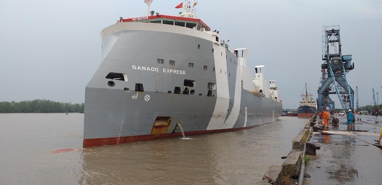 Tầu Bò Úc GANADO EXPRESS cảng Cá HP