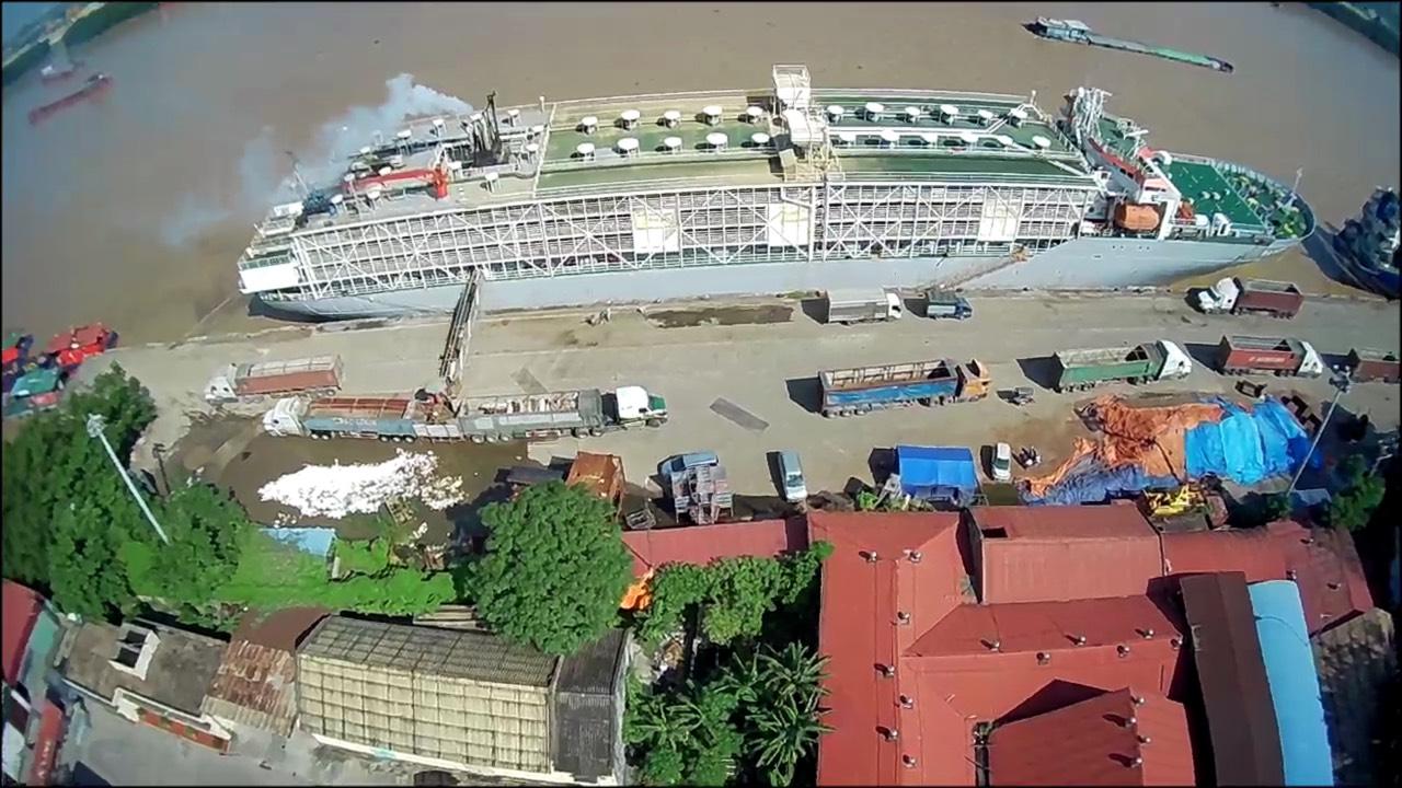 Vận chuyển Bò Úc Cảng Cá + Hoàng Diệu HP