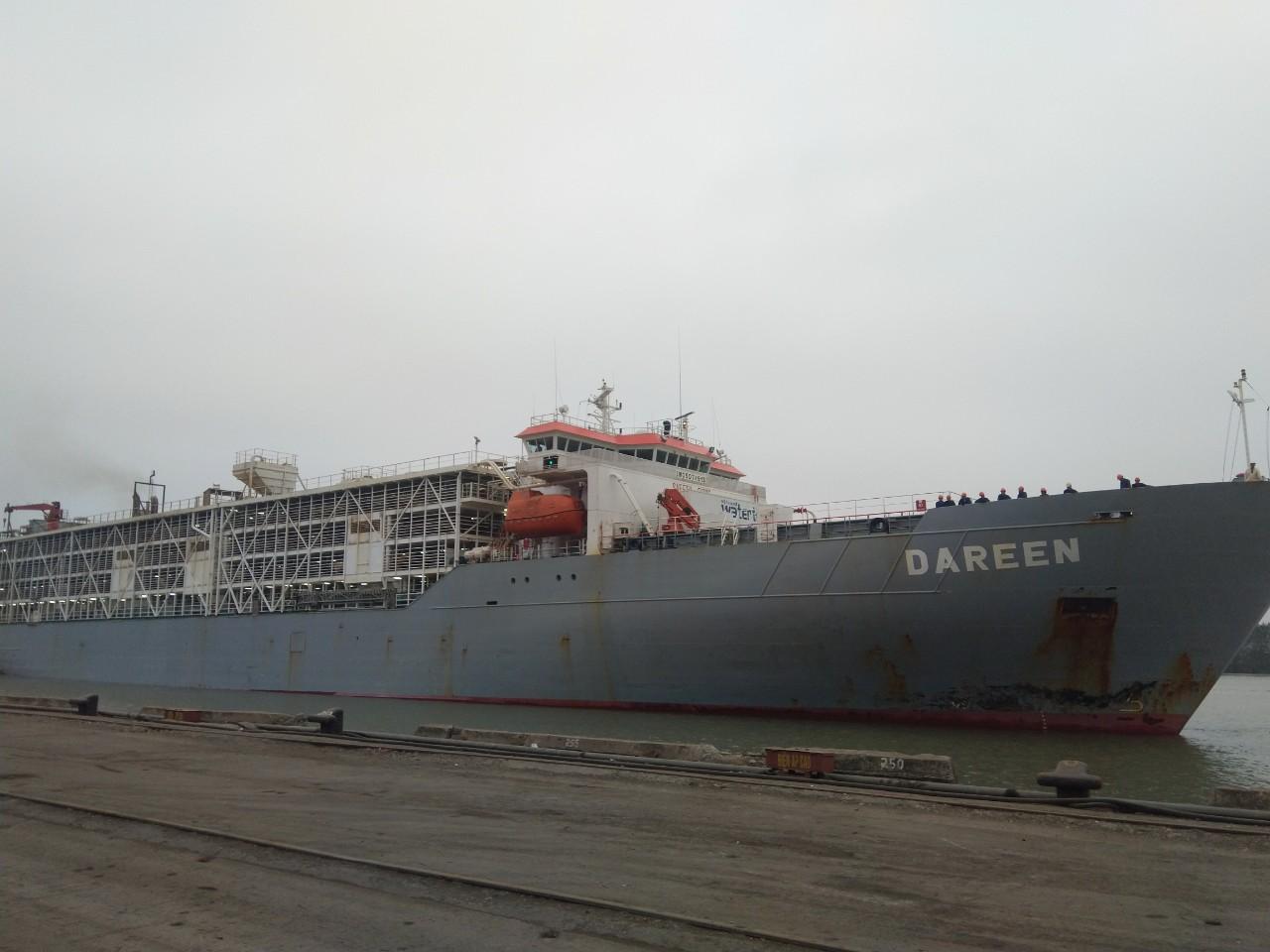 Tầu bò úc DAREEN Cảng Cá HP