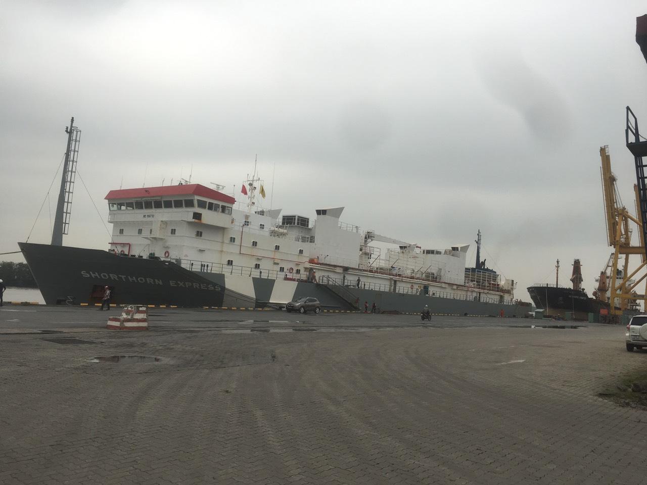 Tầu Trâu SHORTHORN EXPRESS cảng Chùa Vẽ