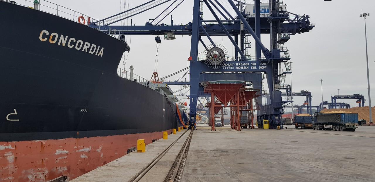 Tàu Concordia Ngô + Khô Đậu cảng CICT