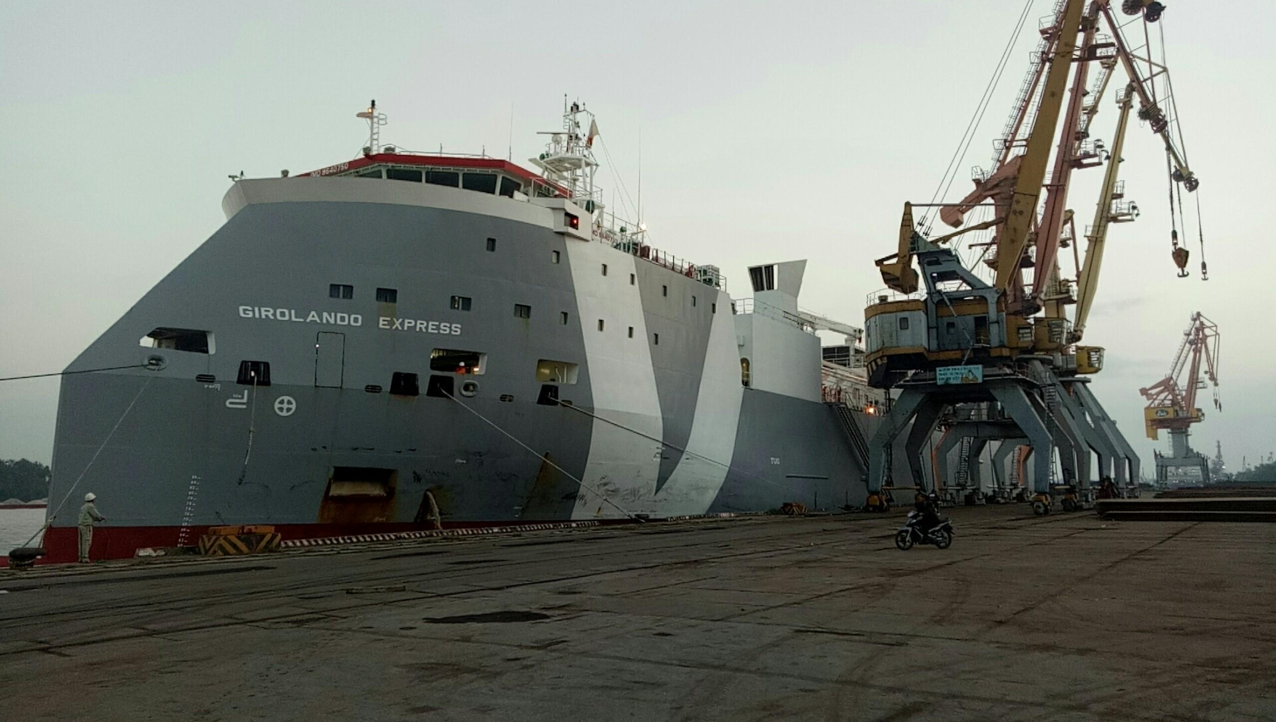 Hai Tầu Bò Úc GREYMAN và GIROLANDO cảng Cá + Hoàng Diệu