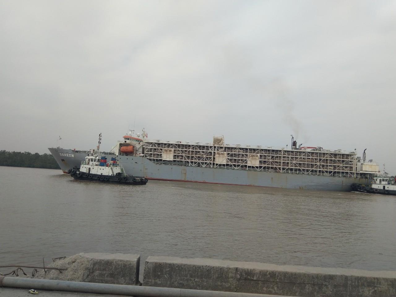 Tầu Bò DAREEN cảng Cá HP