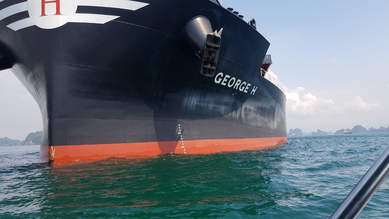 Tổng Hợp Tầu Nông Sản cảng Cái Lân Tháng 08.2020