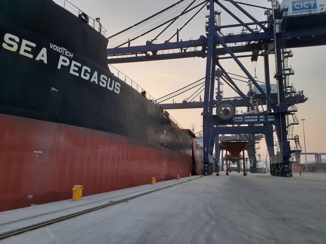 TàuSEA PEGASUS ngô cảng CICT
